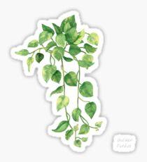 Golden Pathos - [Indoor Plant Love] Sticker