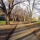 Path running through Princes Park by Ameel Khan