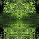 Tranquility by Rowan  Lewgalon