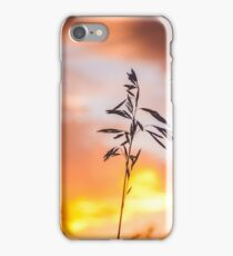 Wheat Against the Sunset iPhone Case/Skin
