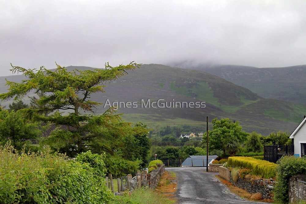 Irish country lane by Agnes McGuinness