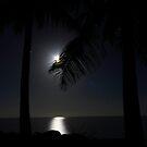 Full Moon by Ron  Wilson