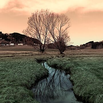 A stream, dry grass, reflections and trees II | waterscape photography by patrickjobst