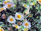 Paintbucket Daisies by RC deWinter