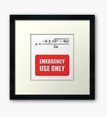 Useless Math Framed Print