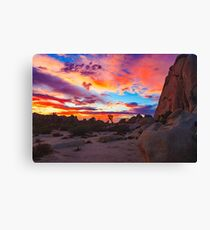 Joshua Tree National Park Sunset 1 Canvas Print
