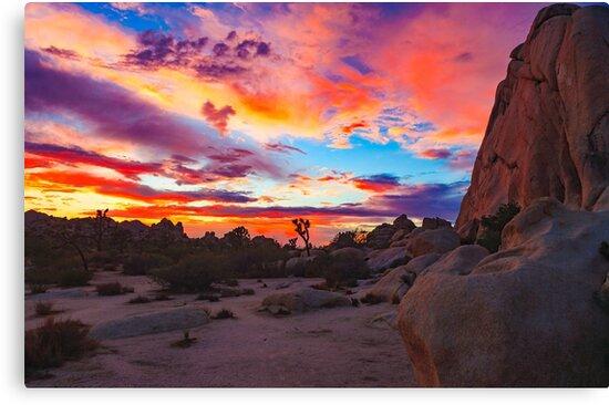 Joshua Tree National Park Sunset 1 by photosbyflood