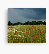 Heaven on the earth and hell in the sky Canvas Print