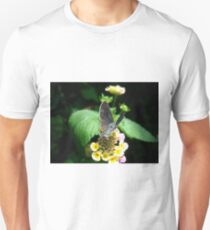 Hairstreak Butterfly Basking Unisex T-Shirt