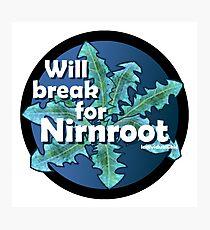 Will break for Nirnroot Photographic Print