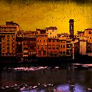 The River Arno by Mary Ann Reilly