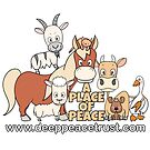 A Place Of Peace (design by Kaz Wilbo) by Deep Peace Trust