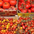 Tomatoes by erwina