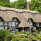 Heather Cottage, Micheldever, Hampshire, southern England (2) by Philip Mitchell