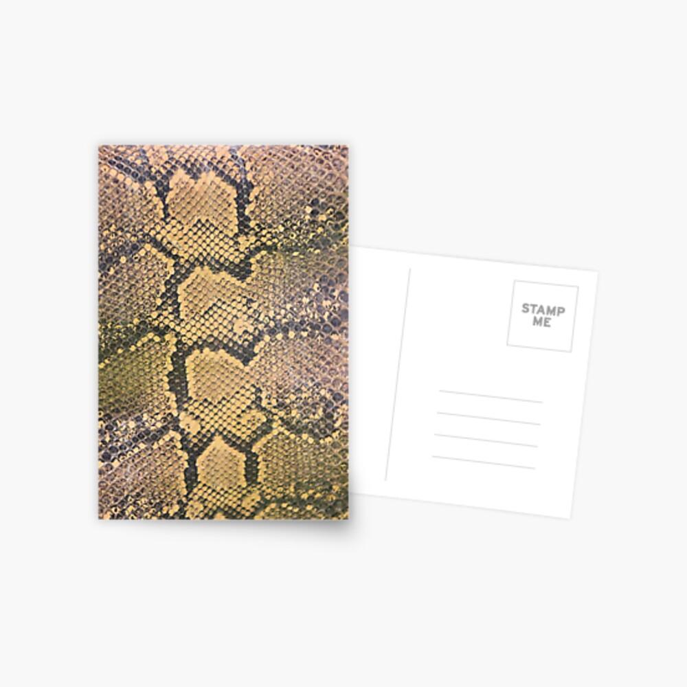 Snakeskin Postcard