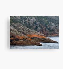 Freycinet Coastline 3 Canvas Print