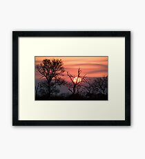 Sabi Sands Sunset Framed Print