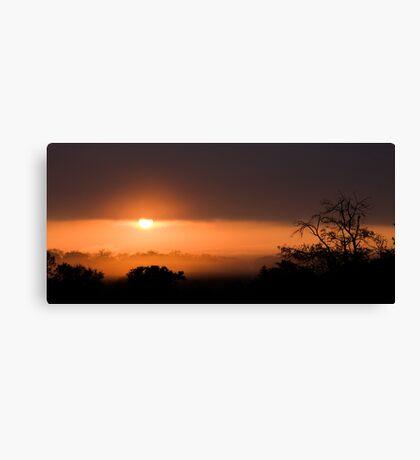Thornybush Sunset Canvas Print
