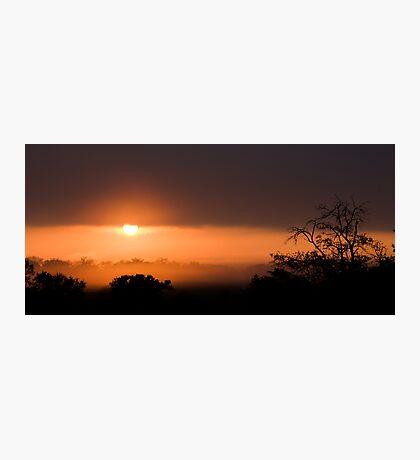 Thornybush Sunset Photographic Print