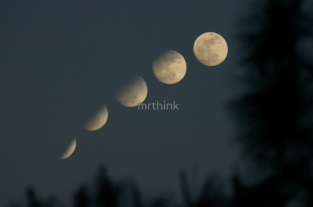 Moon Phases by mrthink