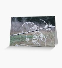iced wire Greeting Card