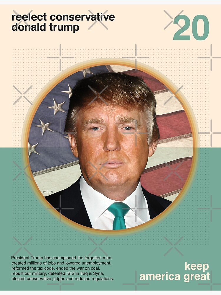 Reelect President Trump by morningdance