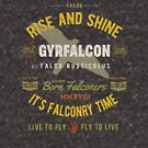 Gyrfalcon Falconry for Falconers Who Fly Gyrfalcons  by Robert Diebold