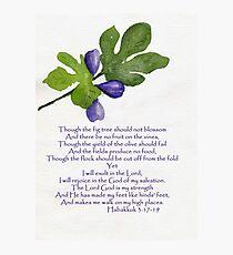 Hoffnung - Habakkuk 3: 17-19 Fotodruck