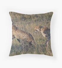 Cheetah Males Playing Throw Pillow