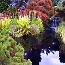 Pond at Peddlers Village, Lahaska, Pa. by DaveHrusecky
