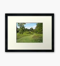 the Excursion Framed Print