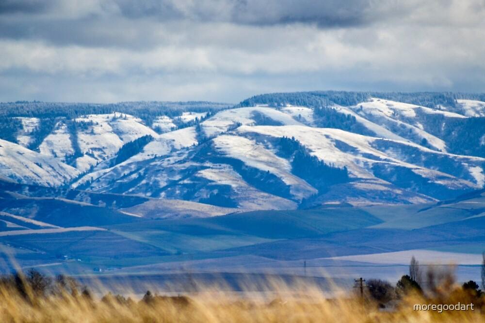 Blue mountains by moregoodart