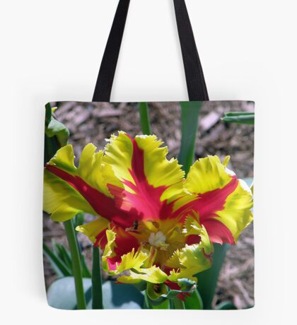 Yellow & Red Parrot Tote Bag