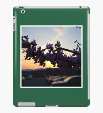 Scenery iPad Case/Skin