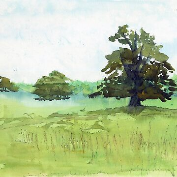 Watercolour of a Meadow in Melbourne, Derbyshire by WaterGardens