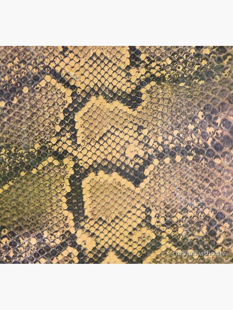 Snakeskin by chihuahuashower