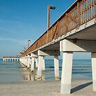 Morning at the Pier  by John  Kapusta