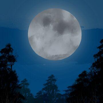 Full moon by BCartwork