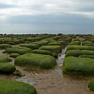 Hunstanton, Norfolk by SusanAdey