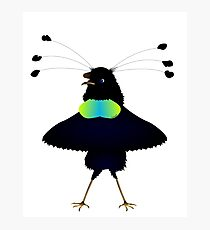 Bop the Ballerina Bird Photographic Print