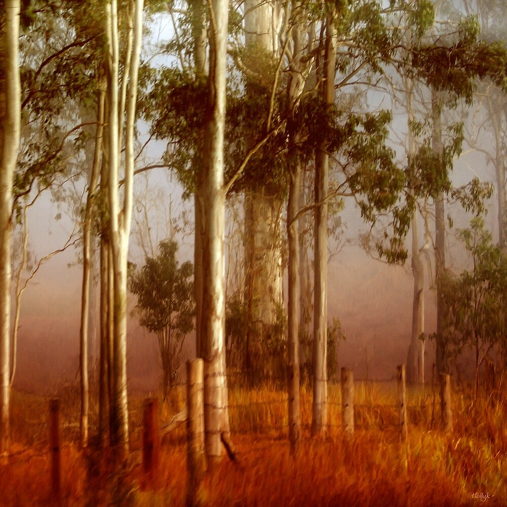T a l l   Timbers by Holly Kempe