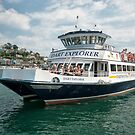 Dart Explorer auf dem Fluss Dart in Dartmouth von Jay Lethbridge