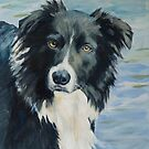 Border Collie Portrait by Yulia Kazansky