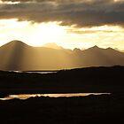 Golden Sunset by Kat Simmons