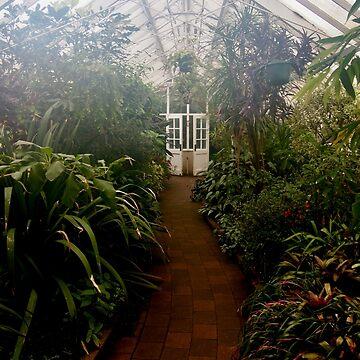 Tropical House, Dunedin Botanic Garden, New Zealand by douglasewelch