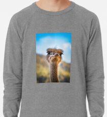 face-2-face Lightweight Sweatshirt