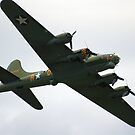 Sally B Flies Again! by Wayne Gerard Trotman