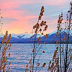 Sunrise Beauty by Harry Oldmeadow