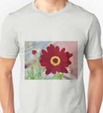Red Daisy Bloom Unisex T-Shirt