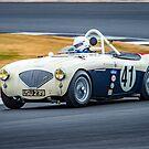1954 Austin Healey 100M by Willie Jackson